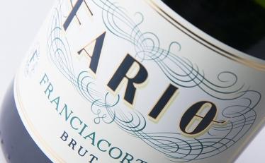fario-sito3